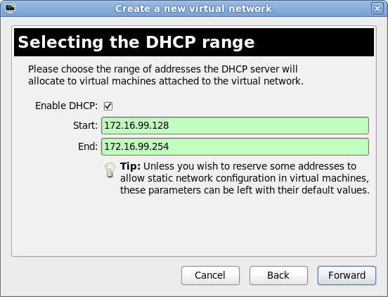 Virtual network wizard nat 03 choose dhcp options.png