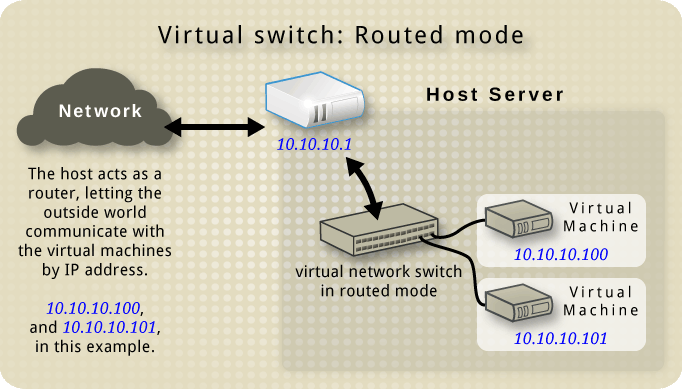 Virtual network switch in routed mode.png