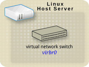 Linux host with only a virtual network switch.png