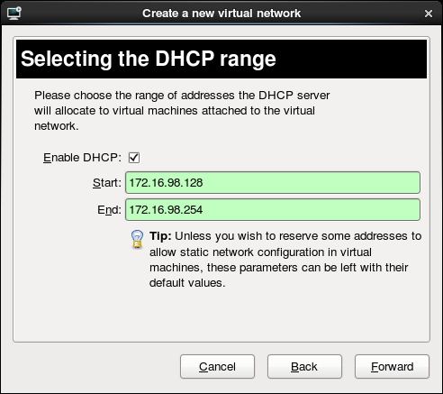 Virtual network wizard routed 03 choose dhcp options.png